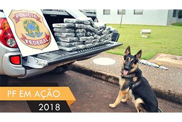 Presa pela PF no Aeroporto Internacional de São Paulo com cocaina